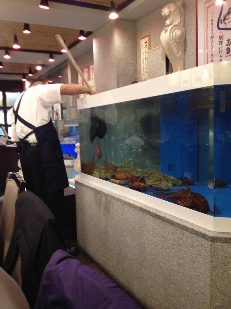 kochi_restaurant
